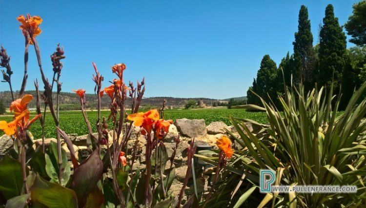 luxury-house-for-sale-minervois-33